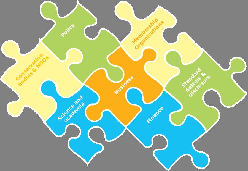 Coalition Jigsaw