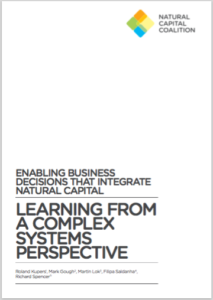 learning from a complex systems perspective
