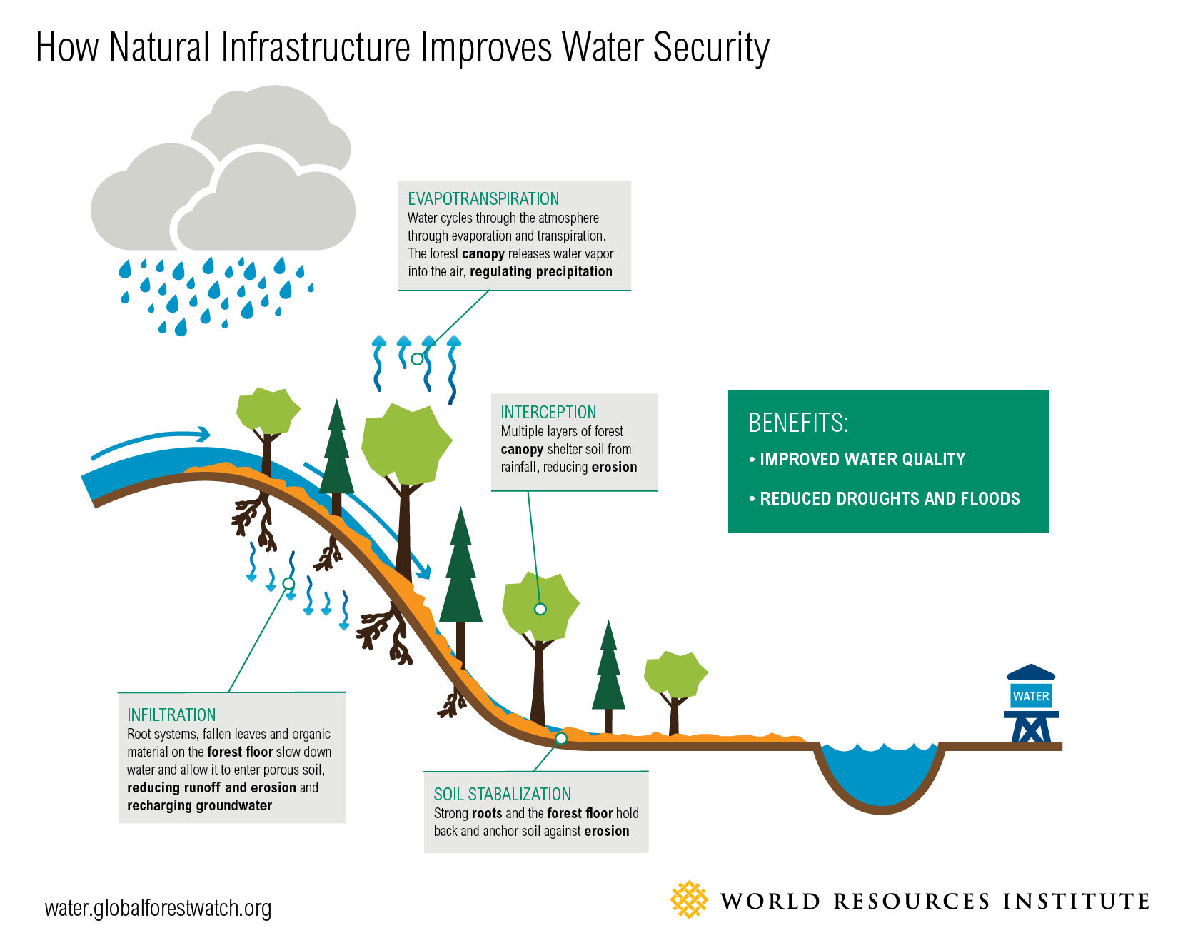 Natural Capital Coalition Watersheds Lost Up To 22 Of