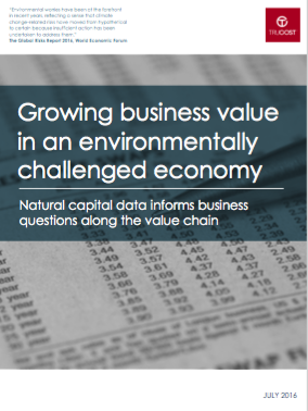 Growing business value in an environmentally challenged economy