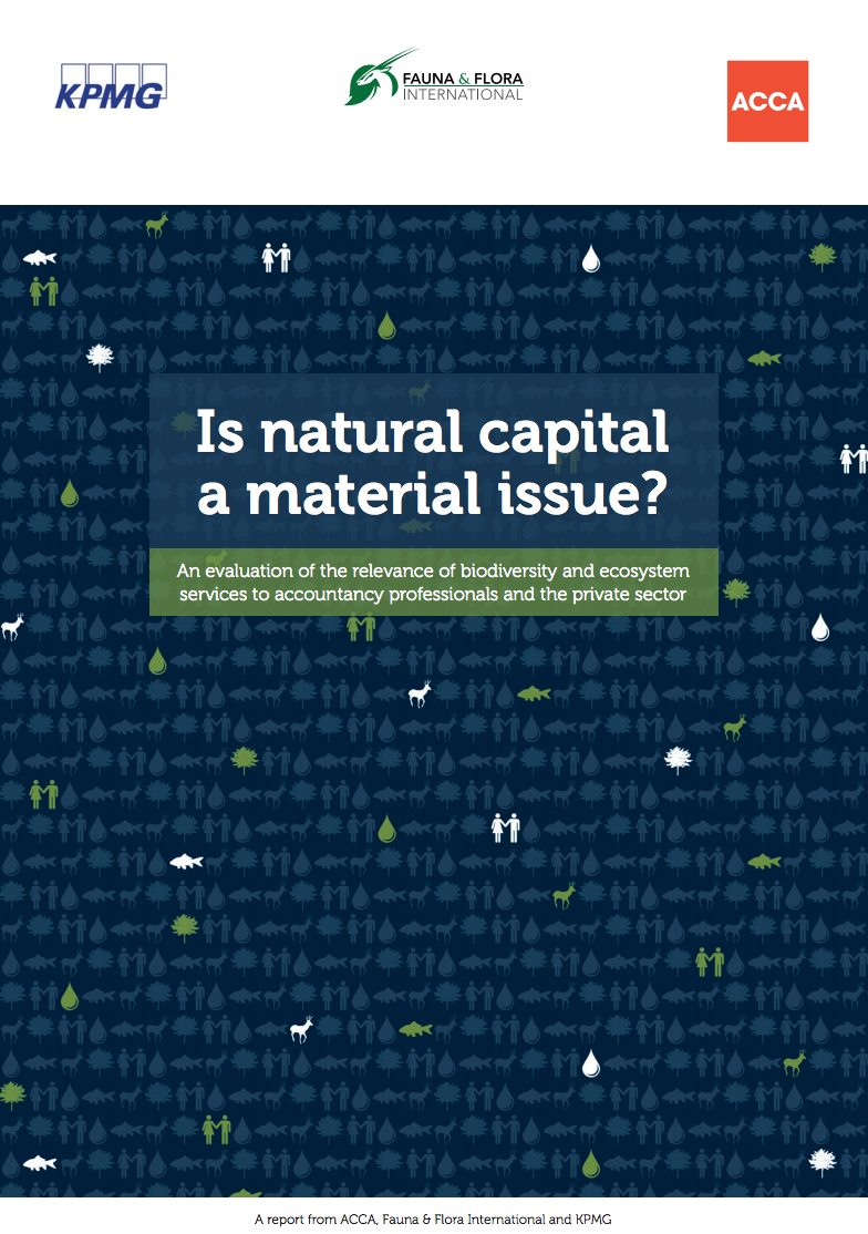 Is Natural Capital a Material Issue?